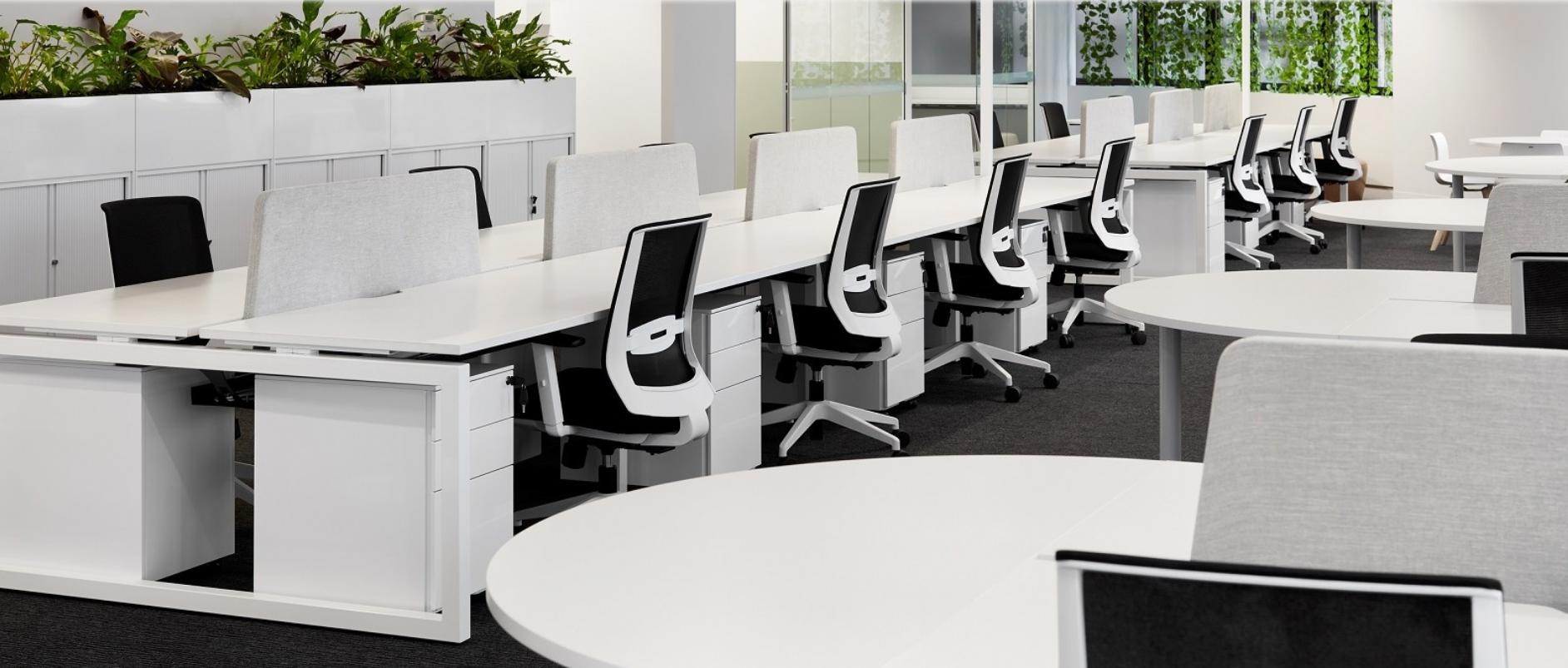 Loop Desk Cluster With Acoustic Screens